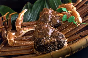 間人蟹(たいざガニ)